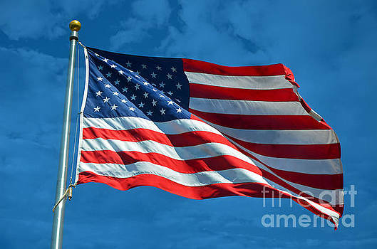 Ole Glory by Frank Larkin
