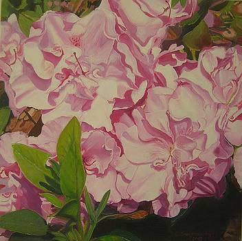 Oleander  by Ewald Smykomsky