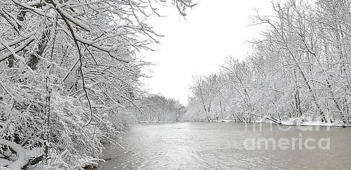 Olentangy River Delaware Ohio by Brian Mollenkopf