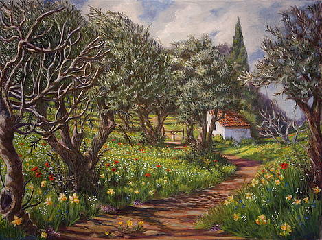 Yvonne Ayoub - Olive Grove in Spring-time