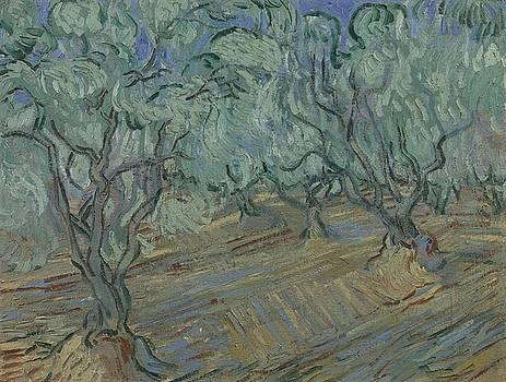 Olive Grove Saint Remy de Provence  June 1889 Vincent van Gogh 1853  1890 by Artistic Panda