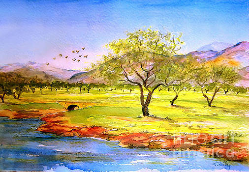 Valerie Anne Kelly - Olive grove-Landscape Painting By V.kelly