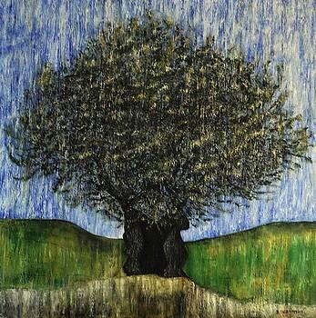 Olive Tree by Dimitra Papageorgiou