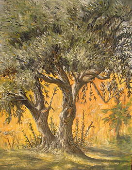 Yvonne Ayoub - Olive Tree