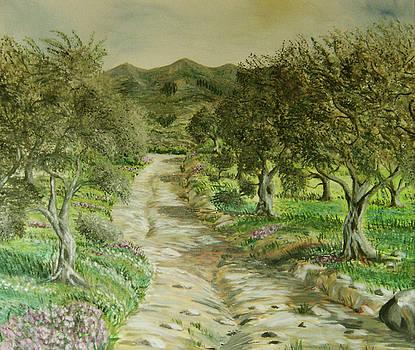 Olive trees at Kakakidi nr 3  by Anna Witkowska