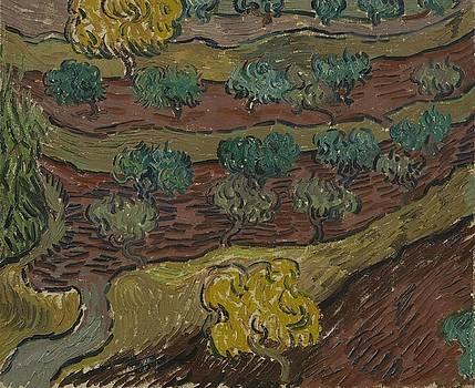 Olive Trees on a Hillside Saint Remy de Provence  November   December 1889 Vincent van Gogh 1853  by Artistic Panda