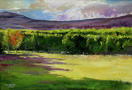 Olivebridge by James Gallagher