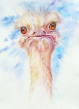 Oliver the Ostrich by Arti Chauhan