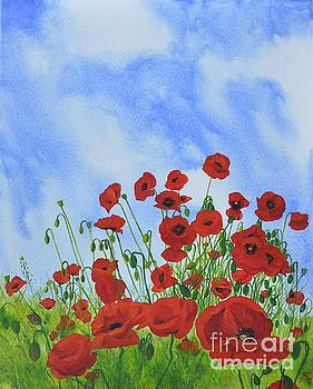 Olivia's Poppies by Sandra Phryce-Jones