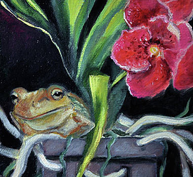 Ollie the frog in orchid pot by Gayle Bell