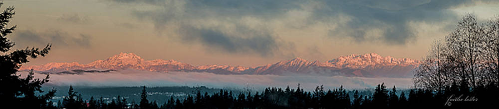 Olympic Mountains at Dawn.1 by E Faithe Lester