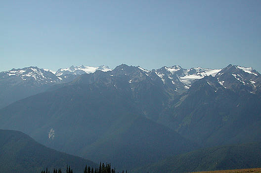 Kathi Shotwell - Olympics from Hurricane Ridge