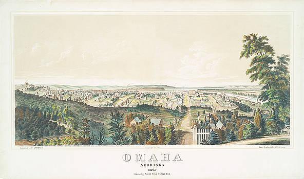 Ricky Barnard - Omaha, Nebraska looking north from Forest Hill 1867