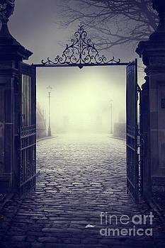 Ominous Gateway On A Foggy Night  by Lee Avison