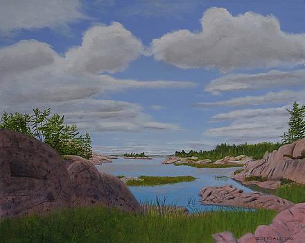 On Chickinishing Creek by Doug Goodale