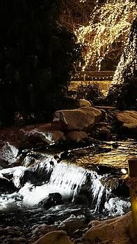 On Christmas Pond by Barkley Simpson
