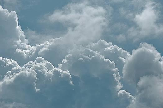 Joy Bradley - On Cloud Nine