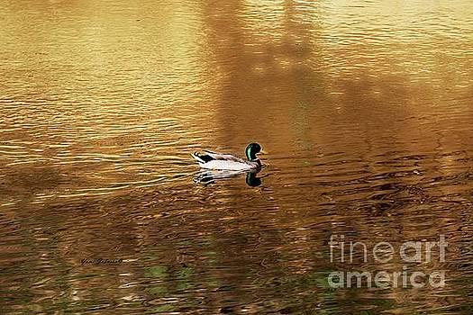 On Golden Pond by Yumi Johnson