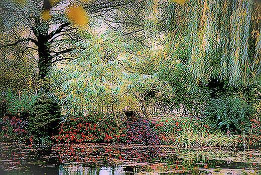 Reflection on, Oscar - Claude Monet's Garden Pond by D Davila