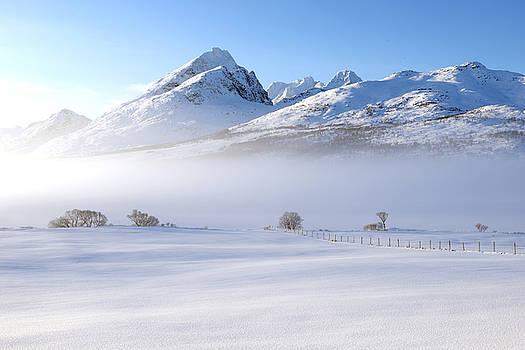 Fog in Lofoten 4 by Dubi Roman