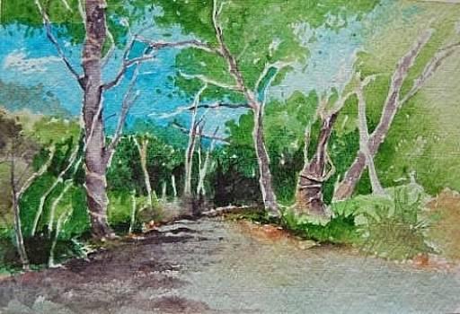 On Road to Baratang by Prakash Sree S N