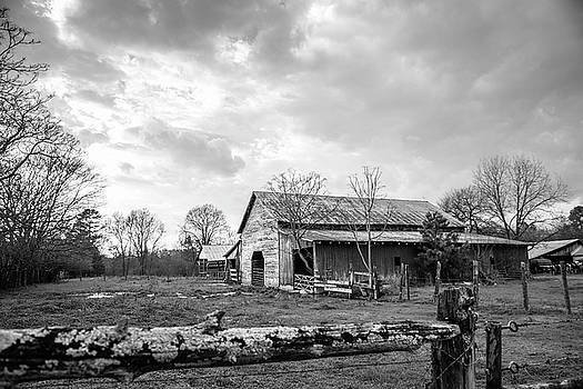 On The Farm in Alamance County by Cynthia Wolfe