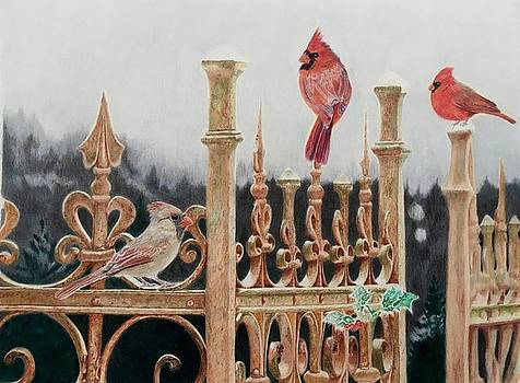 On the Fence - Cardinal by Michelle McAdams