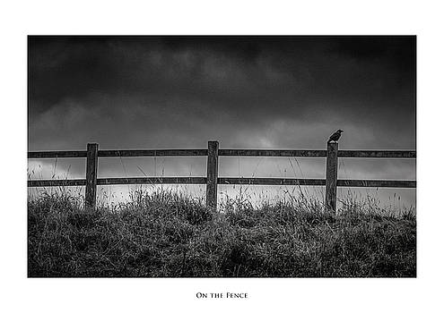 On the Fence by Phil Fiddyment