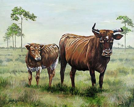 On the Florida Prairie Cracker Cattle by Joan Garcia