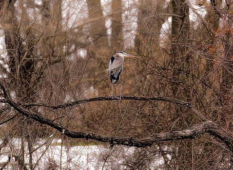On the Kill by James Figielski by Paulinskill River Photography