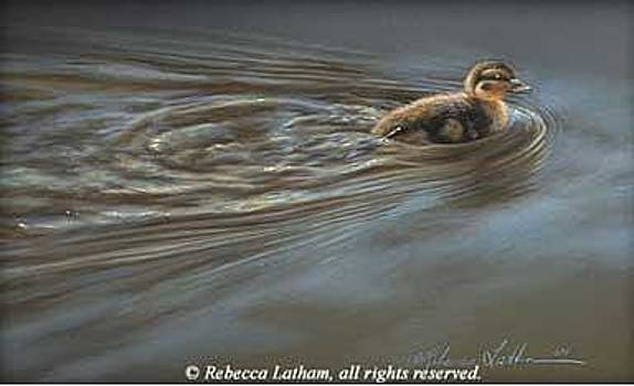 On The Move - Mallard Duckling by Rebecca Latham