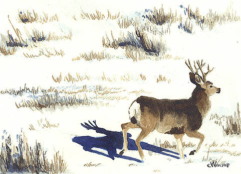On The Move by Christine Winship