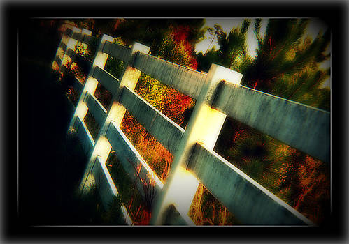 On the other side of the fence by Vanessa Reed