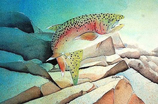 On the Rocks by Robert Yonke