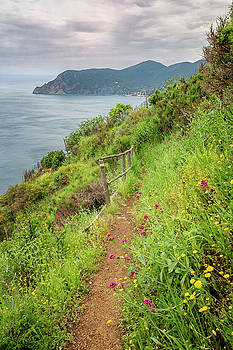 On the Trail to Vernazza Cinque Terre Italy by Joan Carroll