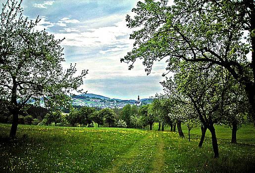 On the Way to Gramastetten ... by Juergen Weiss