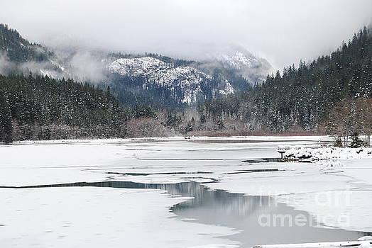 On Thin Ice by Beth Erickson