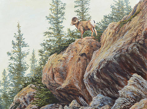 On This Rock by Jim Young