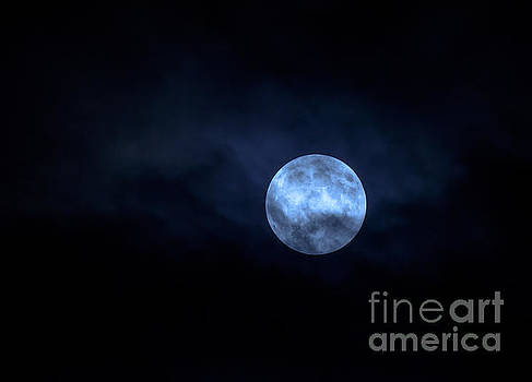Once in a Blue Moon by Sandy Molinaro