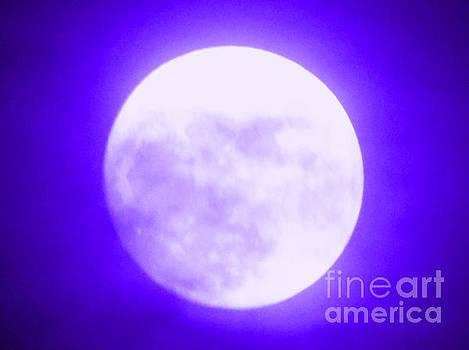 Once in a Purple Moon by Carol Eliassen