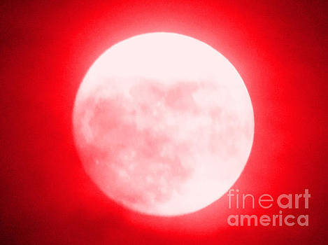 Once in a Red Moon  by Carol Eliassen