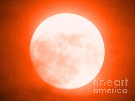 Once in an Orange Moon by Carol Eliassen