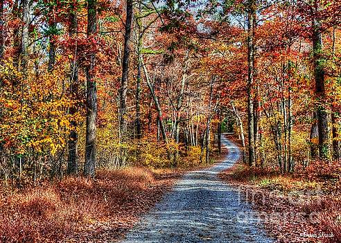One Autumn Day by Debra Straub
