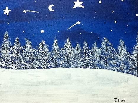 One Beautiful Night by Jonathan Ford