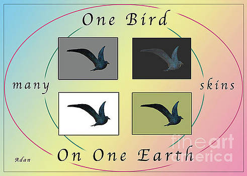 Felipe Adan Lerma - One Bird Poster and Greeting Card v1