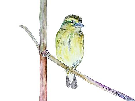 One Legged Bird by Ed Berlyn
