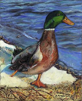 One Legged Duck by Olga Kaczmar