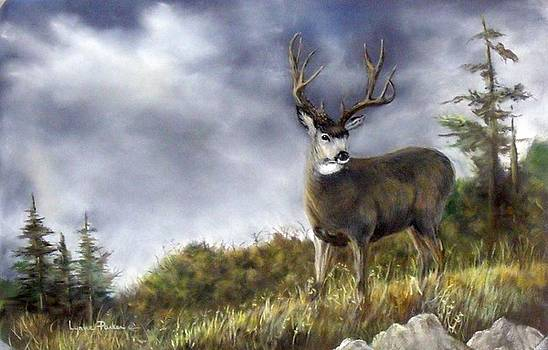 One Lonely Mule Deer by Lynne Parker