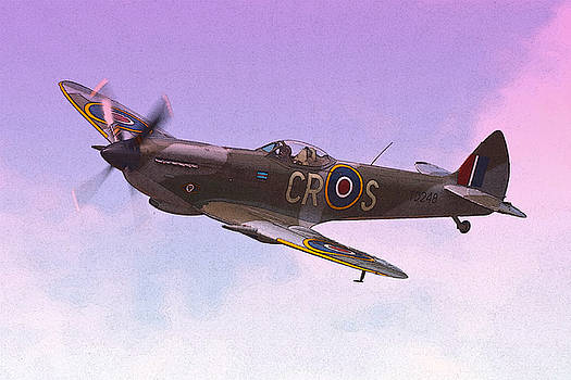 One Of The Few by Russell Pittock