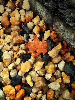 One Orange Leaf by RC deWinter